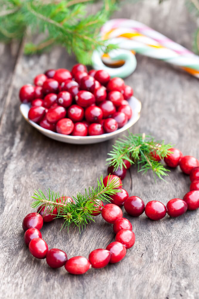 Beautiful Cranberry Mini Wreaths