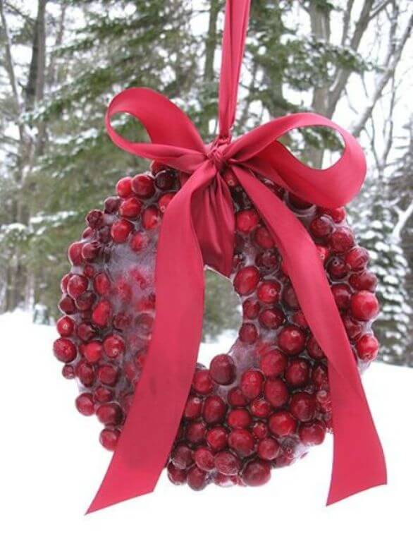 Frozen Cranberry Christmas wreath