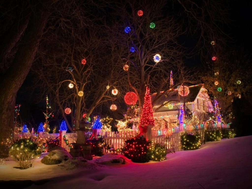 Front Yard Christmas Lights Decor