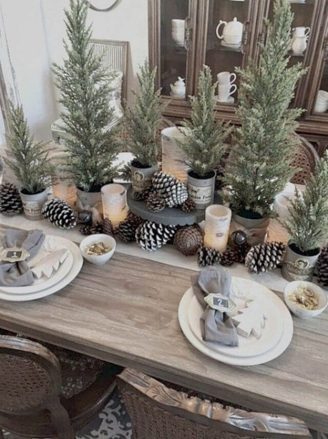 Plants and pinecones Rustic Christmas