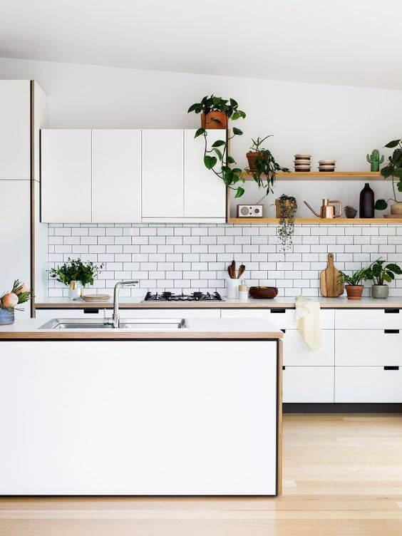 Small minimal kitchen interior with plant decoration