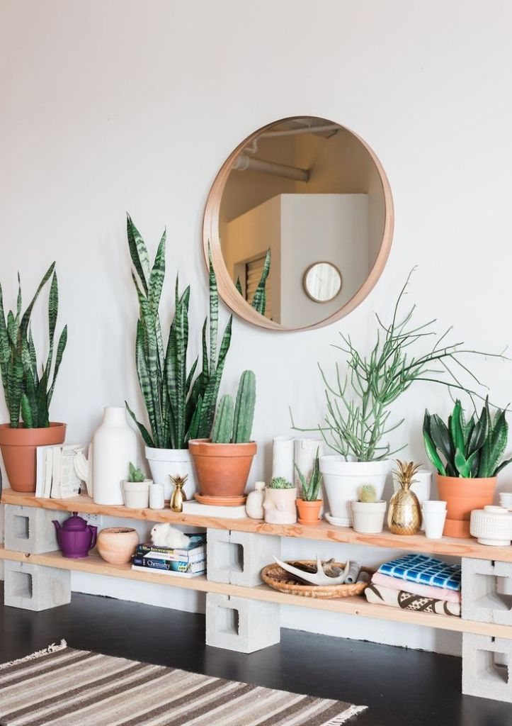 Plants on bench Living room mirror decor
