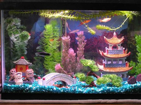 How to Build Aquarium Decoration Themes: Cool Dragon Chinese .