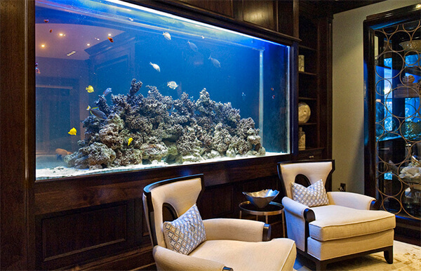 The Absolute Best Aquarium Decorations for Every Holiday .