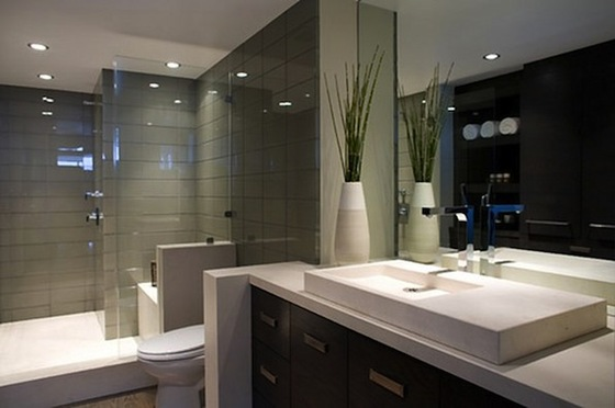 Bathroom Designs - Bob Vi