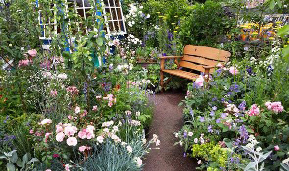 Alan Titchmarsh tips on creating a secret garden | Express.co.