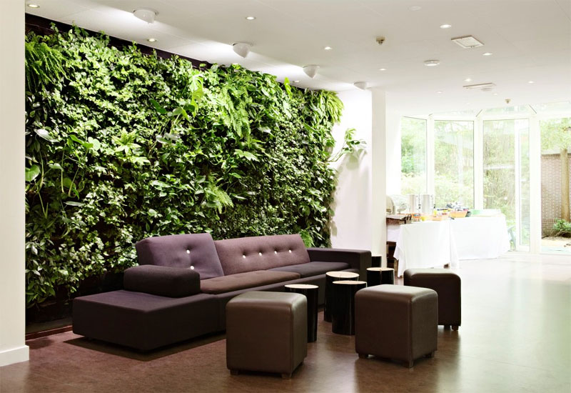 Ways of Decorating Your Interior with Green Plants | Home Design Lov