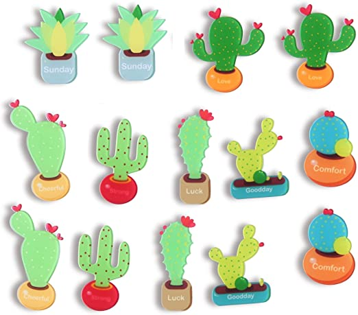 Amazon.com: Cactus Magnets Cute Refrigerator Magnet Fridge Magnet .