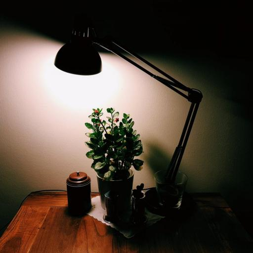 7 Ways You Can Lighten a Dark Room with No Natural Lig