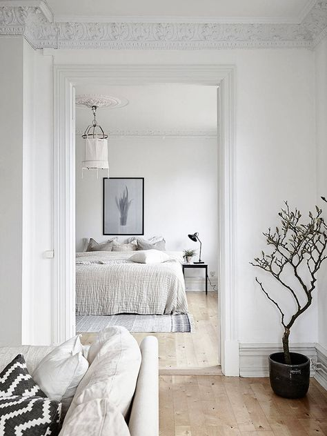 Old Charming Apartment With Scandinavian   Style Decor